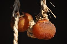 Dried persimmons  2010