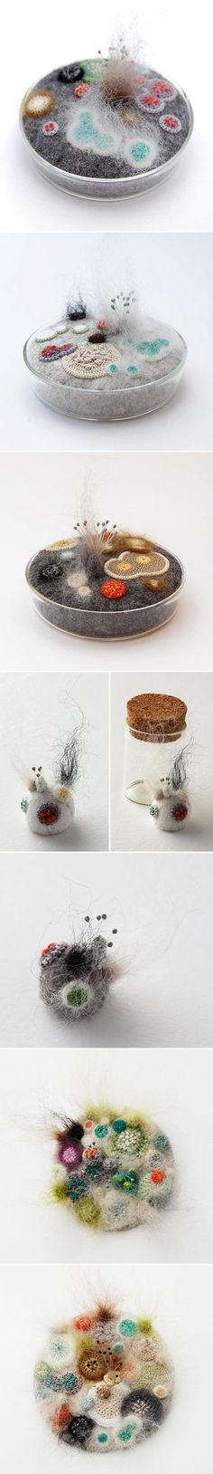 crocheted/embroidered mold, by elin thomas <3