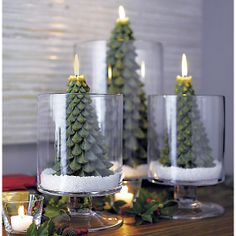 Tree Candles | Crate and Barrel #setthetable