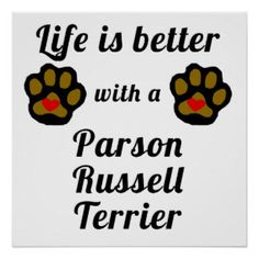Parson Russell Terrier Posters, Parson Russell Terrier Prints, Art ...