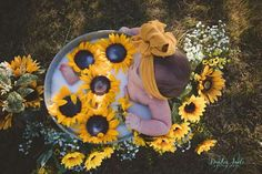 baby milk sunflower bath photoshoot - The world's most private search engine