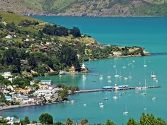 Akaroa, New Zealand.  The place of Bruce's first business trip at his new job.  Way to start off a new chapter!