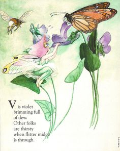 Fanny Y Cory  'V is For Violet'  From The Fairy Alphabet