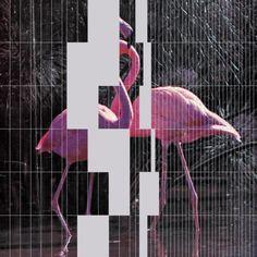 NHK'KOYXEN - Dance Classics Vol. I