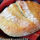 Artisan Bread in Five Minutes a Day: The Master Recipe | absolutely in love with this bread.
