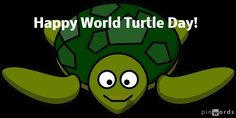 Happy #WorldTurtleDay ! That's what Achilles would say to the Tortoise if he could reach it :) #paradox #Philosophy