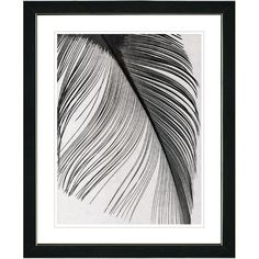 """""""Feather"""" by Zhee Singer Framed Fine Art Giclee Painting Print 