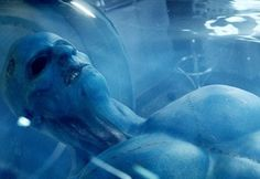 He's not just any alien. The Dec. 2 episode of Marvel's Agents of S.H.I.E.L.D. will finally reveal that its mysterious blue man from outer space — the one whose rejuvenating blood saved the life of Director Phil Coulson (Clark Gregg) — is a member of the humanoid Kree race. Yes, that's the same alien species that gave us Lee Pace's character, Ronan the Accuser, in the Marvel movie blockbuster Guardians of the Galaxy. But all this means bupkis to Coulson and his S.H.I.E.L.D. team.