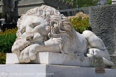 I've always wanted sleeping lion statues outside my home...