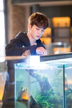 Yoo Seung Ho Yoo Seung Ho, Kim Min, Lee Min Ho, Asian Actors, Korean Actors, Korean Dramas, Kdrama, Robot, Bride Of The Water God