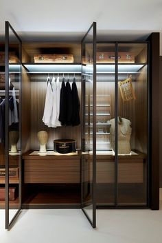 walk though closet with some glass doors?