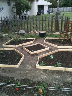 our patchwork back yard garden