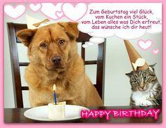 Hund Geburtstag