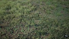 grass pack 3d model low-poly fbx tga uasset 1