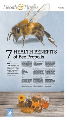 7 Health Benefits of Bee Propolis|Epoch Times Propolis Benefits, Bee Propolis, Honey Benefits, Health Benefits, Health Tips, Honey Bee Pollen, Honey Bees, Raw Honey, Bee Facts