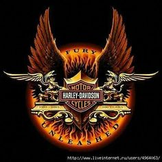 Harley Davidson News – Harley Davidson Bike Pics Harley Davidson Logo, Harley Davidson Kunst, Harley Davidson Kleidung, Harley Davidson Seats, Harley Davidson Scrambler, Harley Davidson Merchandise, Harley Davidson Tattoos, Harley Davidson Pictures, Harley Davidson Wallpaper
