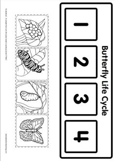 Life Cycle Learning Game from Lakeshore Learning: Children learn all about the life cycle of a butterfly! by dana Life Cycle Learning Game from Lakeshore Learning: Children learn all about the life cycle of a butterfly! by dana Kindergarten Science, Science Activities, Sequencing Activities, Sequencing Events, Butterfly Life Cycle, Stages Of A Butterfly, Lakeshore Learning, Very Hungry Caterpillar, Worksheets For Kids