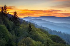 Great Smoky Mountains fine art landscape photography by outdoor photographer Dave Allen. Dave Allen specializes in fine art landscape photography featuring the Great Smoky Mountains National Park of western North Carolina and Eastern Tennessee. Usa Roadtrip, Road Trip Usa, Great Smoky Mountains, Blue Ridge Mountains, Nc Mountains, Appalachian Mountains, Appalachian Trail, Places To Travel, Places To See