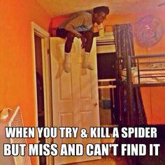 That is me, i i saw the spider, I'd be sittin on a door