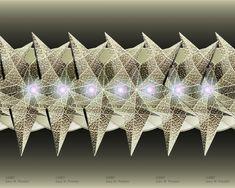 Dimkas Star