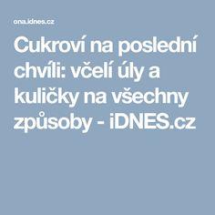 Cukroví na poslední chvíli: včelí úly a kuličky na všechny způsoby - iDNES.cz