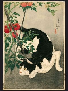 Takahashi Hiroaki dit Shotei 高橋弘明 (1871-1945)