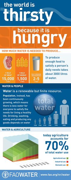 The world is thirsty because it is hungry - To produce enough food to satisfy a person's daily needs takes about 3000 liters of water. #infographic #farming