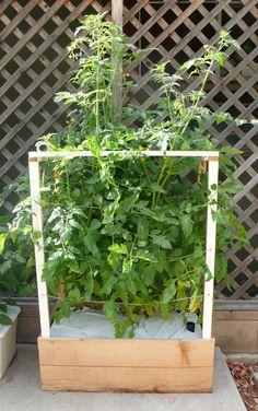home grow micro farms box vertical urbangardensweb