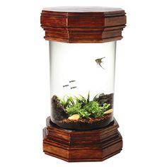 Tuscany Aquarium Kit - 3 gallon Would be a cool shrimp tank