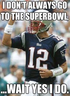 Fan Creations New England Patriots Dog Bone Sign Multi