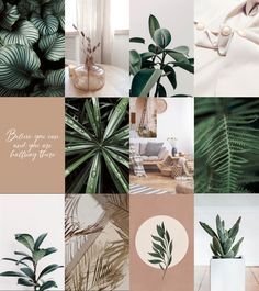 Boho Aesthetic, Plant Aesthetic, Be Our Guest Sign, Or Mat, Photo Wall Collage, Printing Services, Photo Book, Instagram Feed, Aesthetic Wallpapers