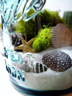 Contained Beach Scenes - The Mason Jar Terrarium is a Great Vacation Keepsake (GALLERY)