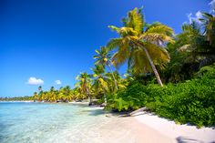 Informace o dovolené - Dominikánská republika 2016 | STUDENT AGENCY