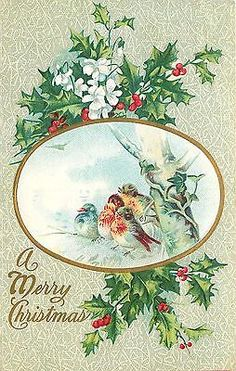 Christmas~Fat Birds~Snowy Tree~Gold Oval~White Blossoms~Red Holly~Emboss~Winsch
