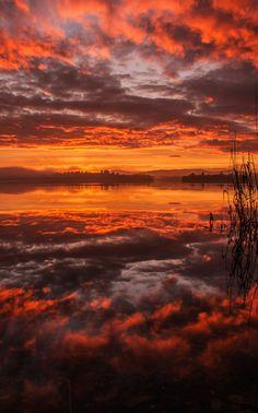 Photograph Burning by katerina folprechtova on 500px