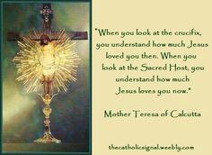 Catholic Saints, Roman Catholic, Adoration Catholic, Saint Teresa Of Calcutta, Lives Of The Saints, Blood Of Christ, Religious Pictures, Saint Quotes, Eucharist