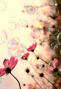 Flowers and bubbles girl wallpaper cute kawaii smartphone iphone galaxy Jolie Photo, Pretty Pictures, Beautiful World, Simply Beautiful, Beautiful Images, Pretty In Pink, Flower Power, Beautiful Flowers, Nature Photography