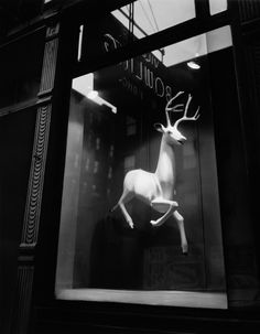 Designer's Window, Bleecker Street, New York, 1947 (photograph by Berenice Abbott) look at this one closely - does he feel alone at night in this shot?  evokes a feeling or pride, aloneness, solitude, peacefulness ... simple and I'm willing to bet they didn't have any reindeer for sale ...