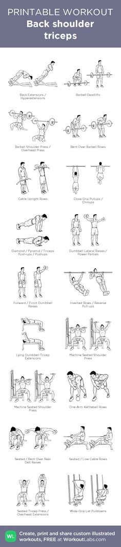 Back shoulder triceps – illustrated exercise plan created at WorkoutLabs.com • Click for a printable PDF and to build your own #customworkout