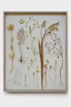 What beautiful work! With a combination of pressed real flowers and intricately cut flower pictures Anne Ten Donkela...