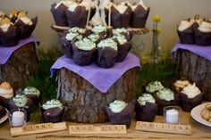Shallow stumps and greens made for a great presentation for the desserts at this wedding.