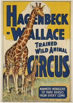 Hagenbeck-Wallace Trained Wild Animal Circus by Boston Public Library, via Flickr