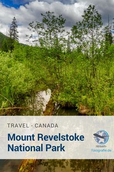 Unser Besuch im Mount Revelstoke National Park und in der Umgebung. Regenwälder, Sümpfe, tolle Aussichten.