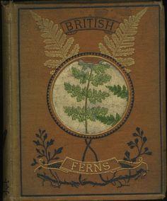 British Ferns 1850