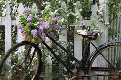 a vintage bike carrying freshly cut flowers is a dreamy way to greet your visitors! By French Country Cottage