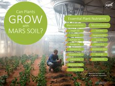 Can Plants Grow with Mars Soil?