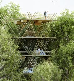 penda places visitors among birds with modular bamboo dwellings