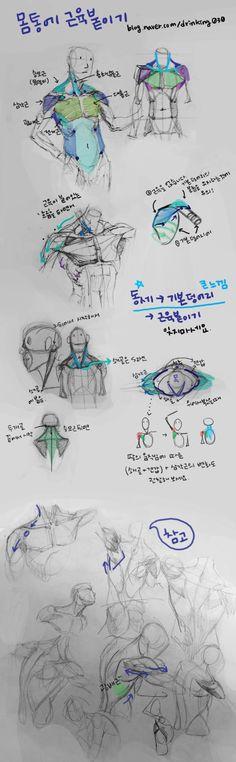 수업용으로 만든 튜토입니다 : 네이버 카페 Sketches, Art Reference Poses, Drawings, Human Anatomy Drawing, Body Reference Drawing, Anatomy Drawing, Human Drawing, Art, Art Tutorials