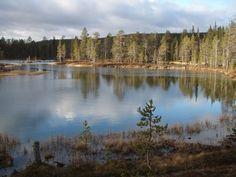UKK-national park Lappland, Wide World, Homeland, Finland, Natural Beauty, Northern Lights, National Parks, Hiking, River