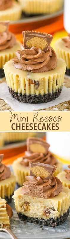 Reeses Peanut Butter Cheesecakes Mini Reeses Peanut Butter Cheesecakes Recipe - full of peanut butter and Reeses!Mini Reeses Peanut Butter Cheesecakes Recipe - full of peanut butter and Reeses! Pudding Desserts, Mini Desserts, Just Desserts, Delicious Desserts, Yummy Food, Polish Desserts, Japanese Desserts, Reese's Peanut Butter Cheesecake, Reeses Peanut Butter